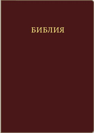 Библия Синодальный перевод (Коричневая). Без молнии, золотой обрез, кожаный переплет