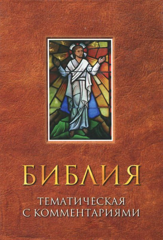 БИБЛИЯ с тематическими комментариями (коричневая)